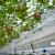 Vườn cà chua sử dụng que cắm nhỏ giọt Rivulis snapeg