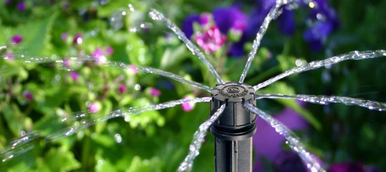 drip-irrigation-for-beginners-782x440